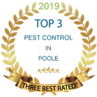 Top 3 Rated For Pest Control