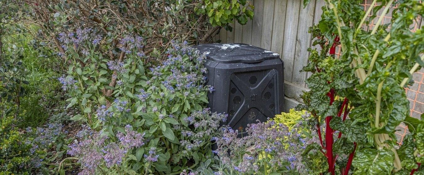 Keeping Your Garden Clean